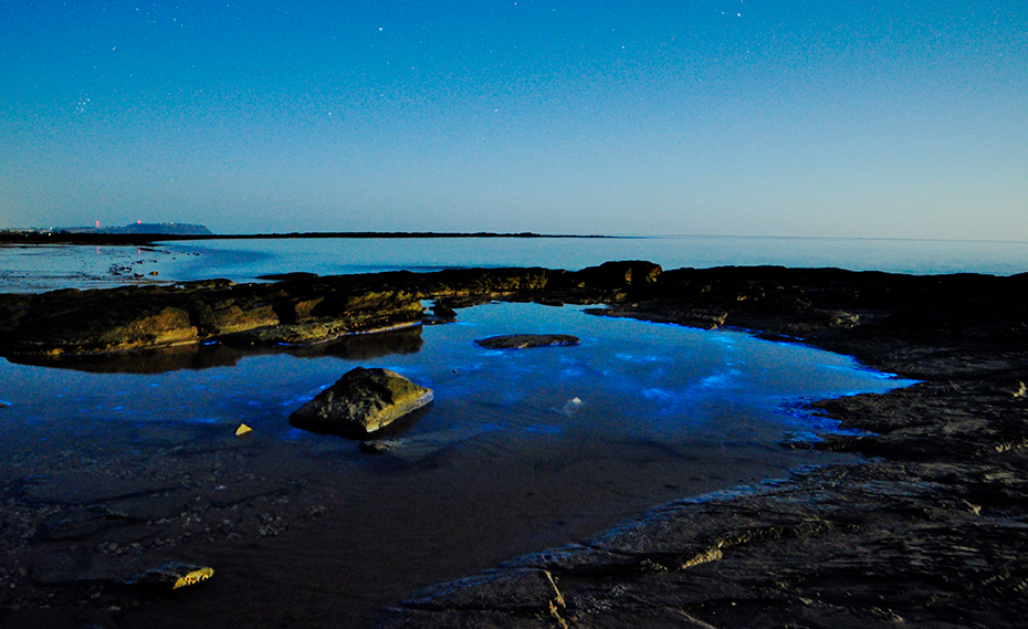 Blue bioluminescence in the water at Somerset