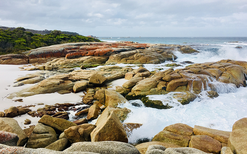 Waves crashing and lichen-covered rocks at Swimcart Beach, Bay of Fires